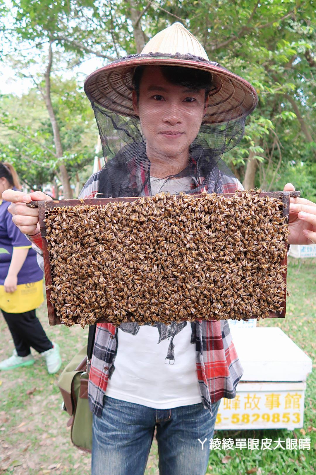 農純鄉魚米之鄉探訪真實之旅|嘉義東石福爾摩沙養殖場、台中后里五崁腳有機田園、雲林古坑蜜蜂故事館