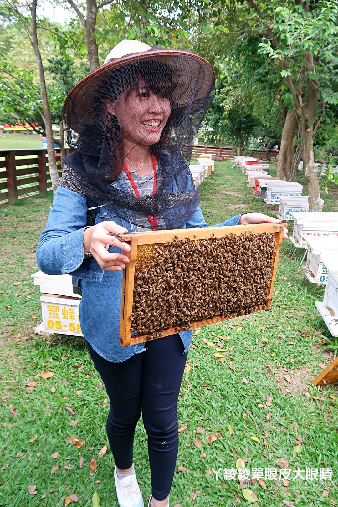 農純鄉魚米之鄉探訪真實之旅 嘉義東石福爾摩沙養殖場、台中后里五崁腳有機田園、雲林古坑蜜蜂故事館