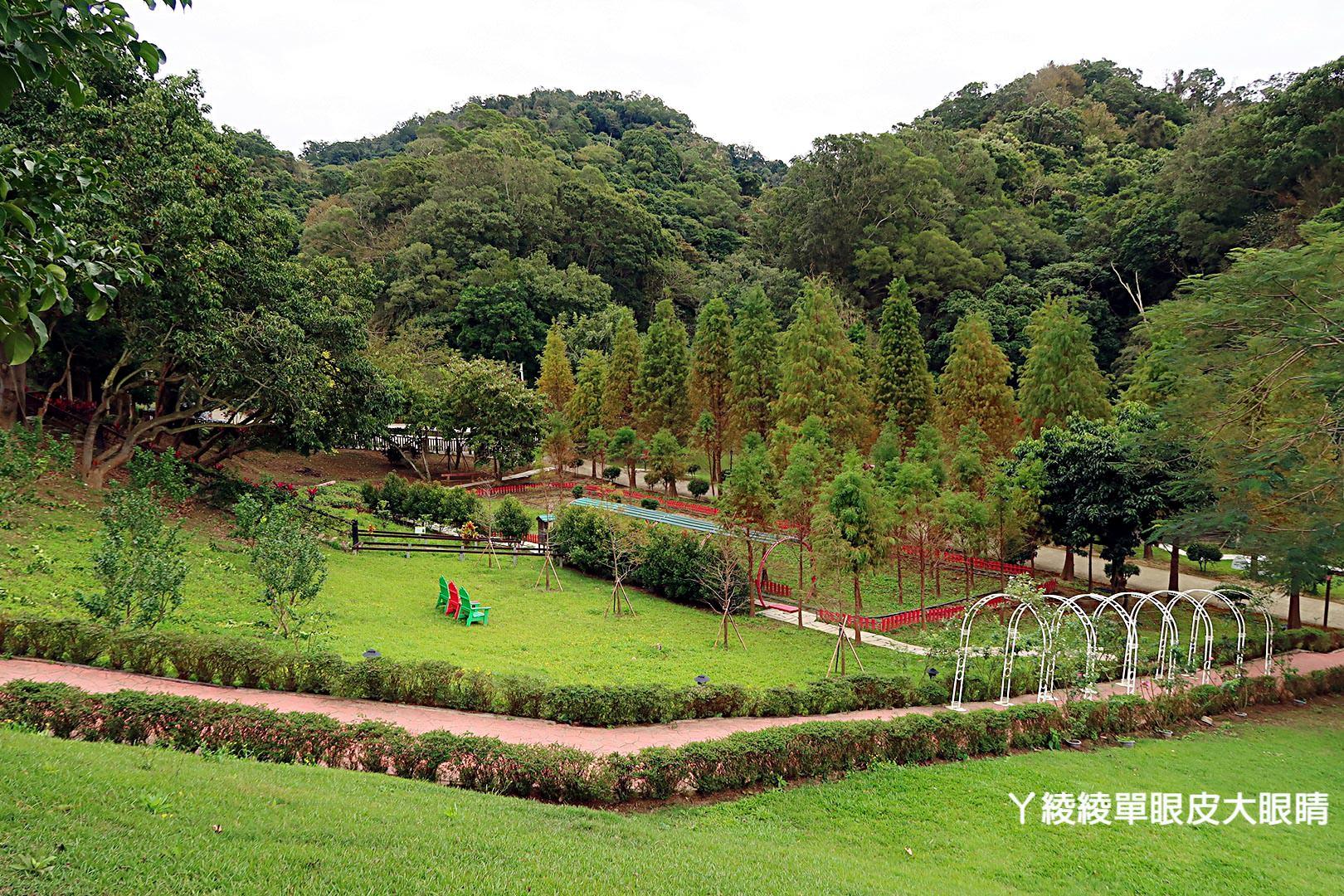 新竹景點推薦!心鮮森林也有落羽松秘境!帶狗狗的主人可免費入園