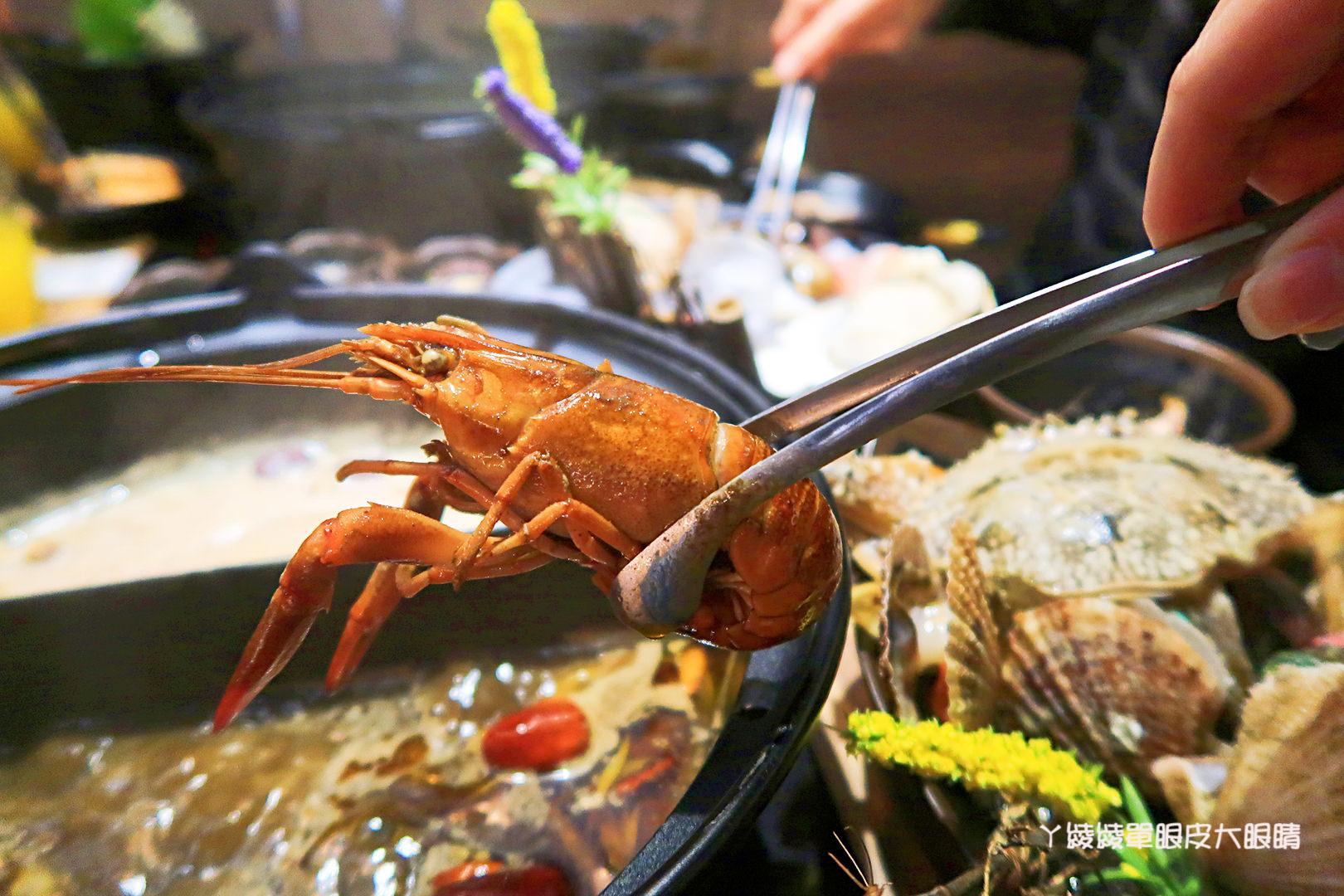 新竹火鍋推薦極鼎鮮鍋物!活跳跳的波士頓龍蝦自己撈,大肉盤吃到不要不要,巨城附近東大路火鍋(暫停營業)