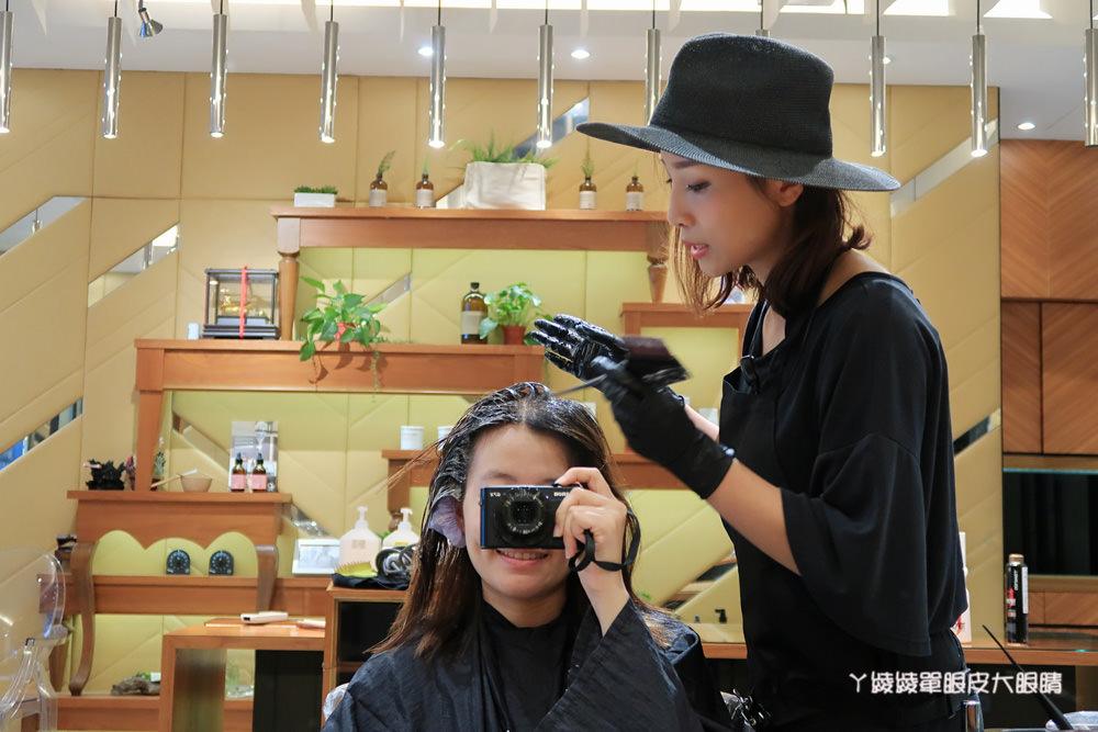 板橋美髮推薦Qdn Hair Salon|物理護髮拯救我的自然捲跟毛躁髮