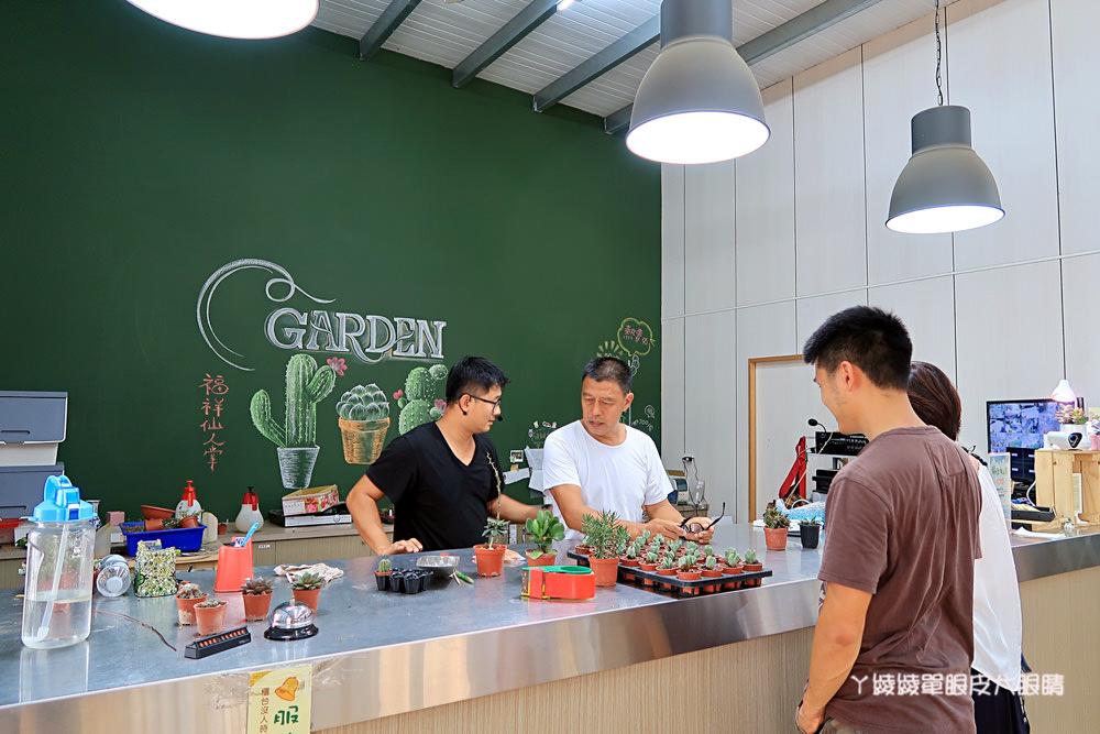新竹免費旅遊景點推薦|新竹多肉植物王國在福祥仙人掌園!IG拍照爆紅打卡景點
