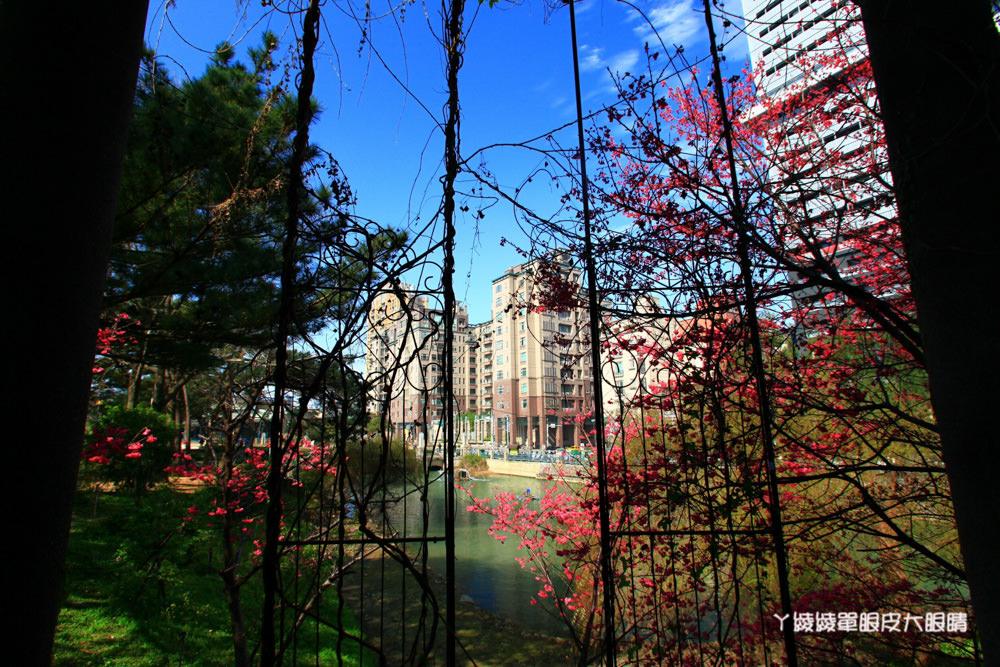 新竹旅遊景點|新竹麗池公園、新竹玻璃工藝博物館開放了!推薦置身夢幻玻璃屋的風Live House館!