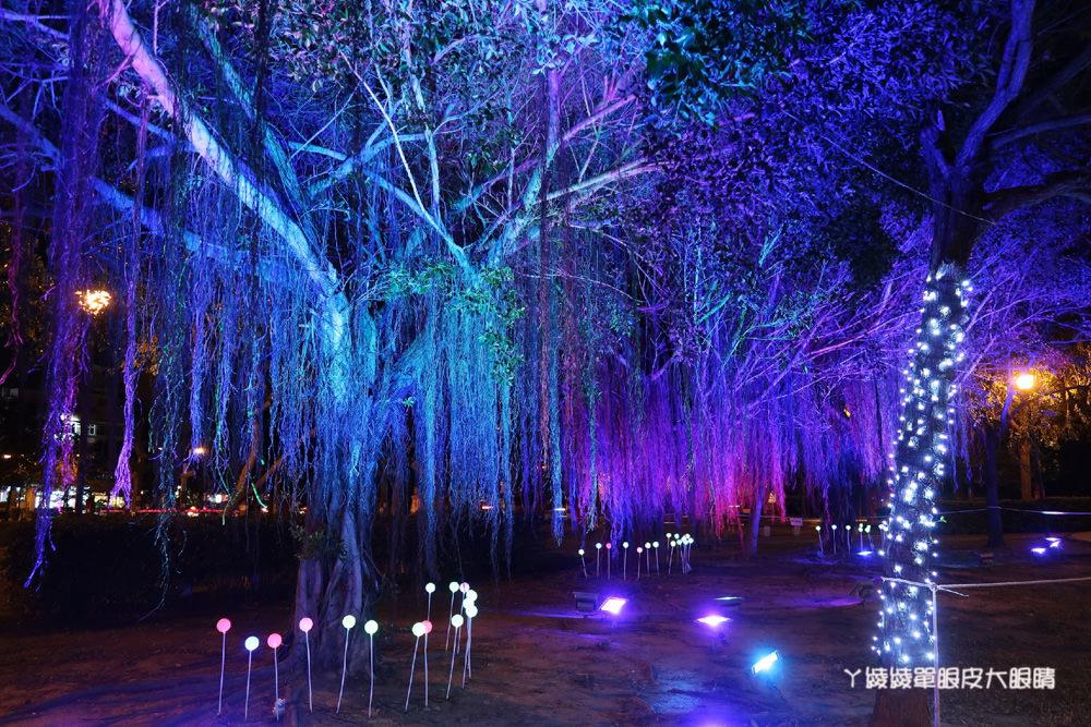 竹北聖誕節點燈活動!南瓜車、玫瑰花海超好拍,15日在文化公園亮相!