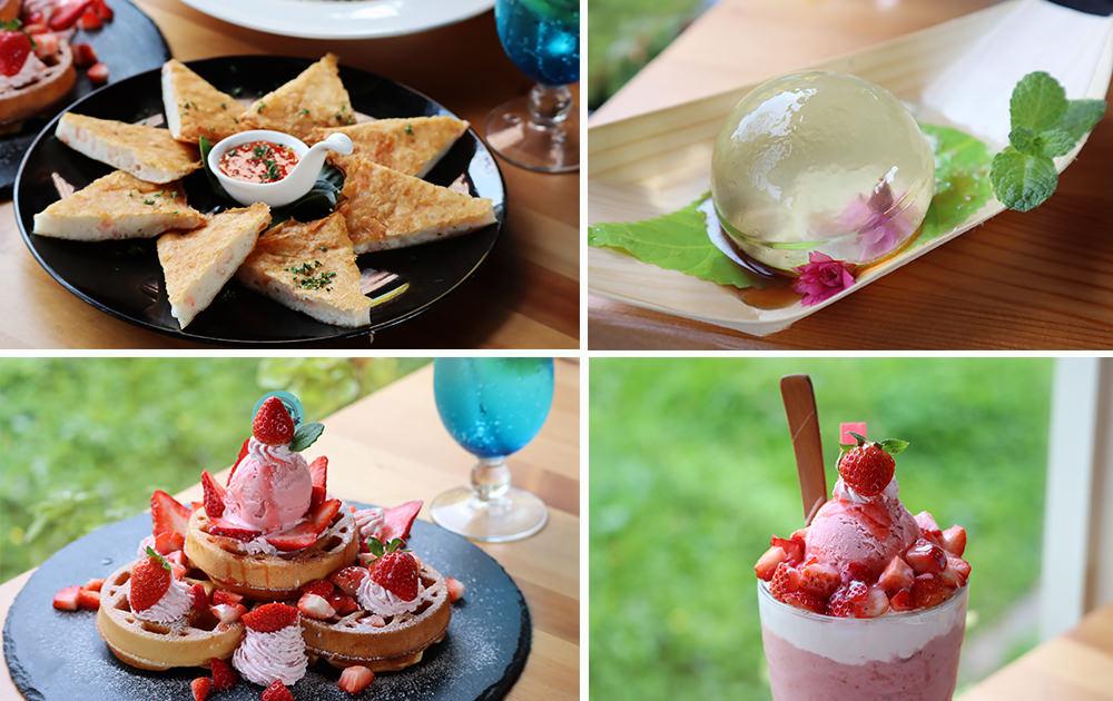趁著櫻花季享用限定櫻花甜點,超夢幻的雨滴蛋糕和草莓飲品,新竹賞櫻景點推薦!