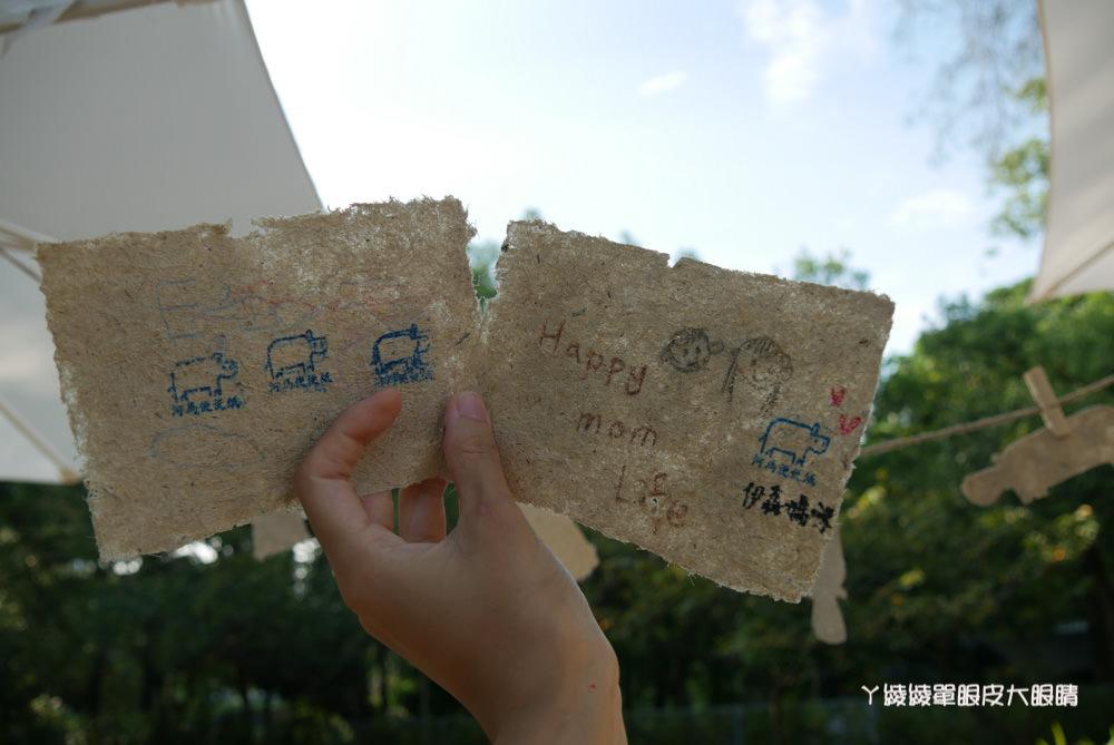 新竹市立動物園導覽活動搶先看河馬樂樂!新竹動物園八月局部試營運,年底將全園開放