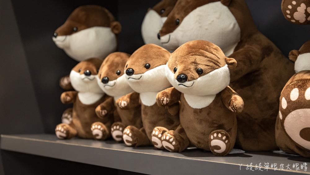 北台灣最大水族館推薦!桃園青埔Xpark水族館門票及交通資訊,必看可愛企鵝隧道、療癒水母